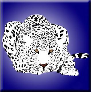 Leopard Coaster c