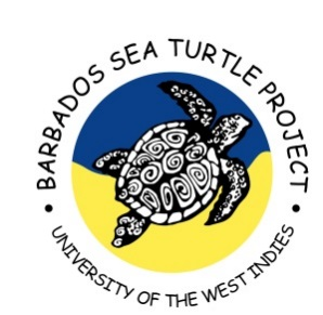 Barbados Sea Turtles Project Logo