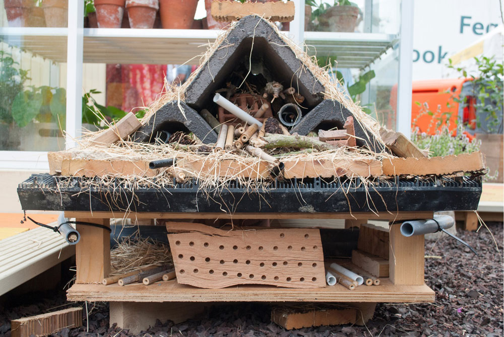 Royal Visit - Bug Hotel