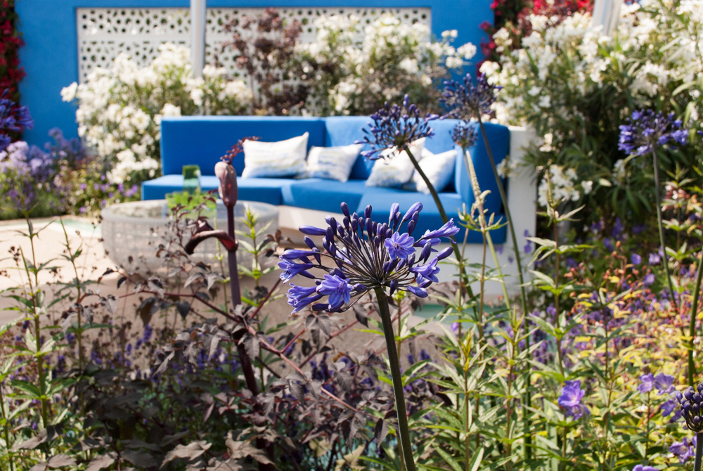 Jenny Blanc Blog - Gold Medal Winner Spirit of the Aegean Garden