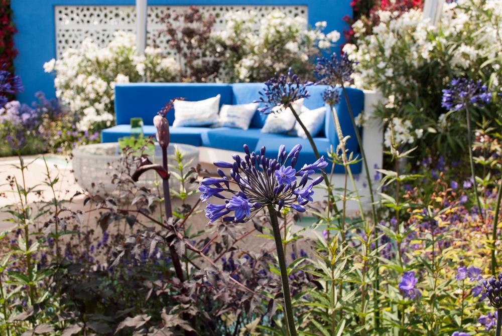 Jenny Blanc Blog - Gold Medal Winner Spirit of the Aegean Garden
