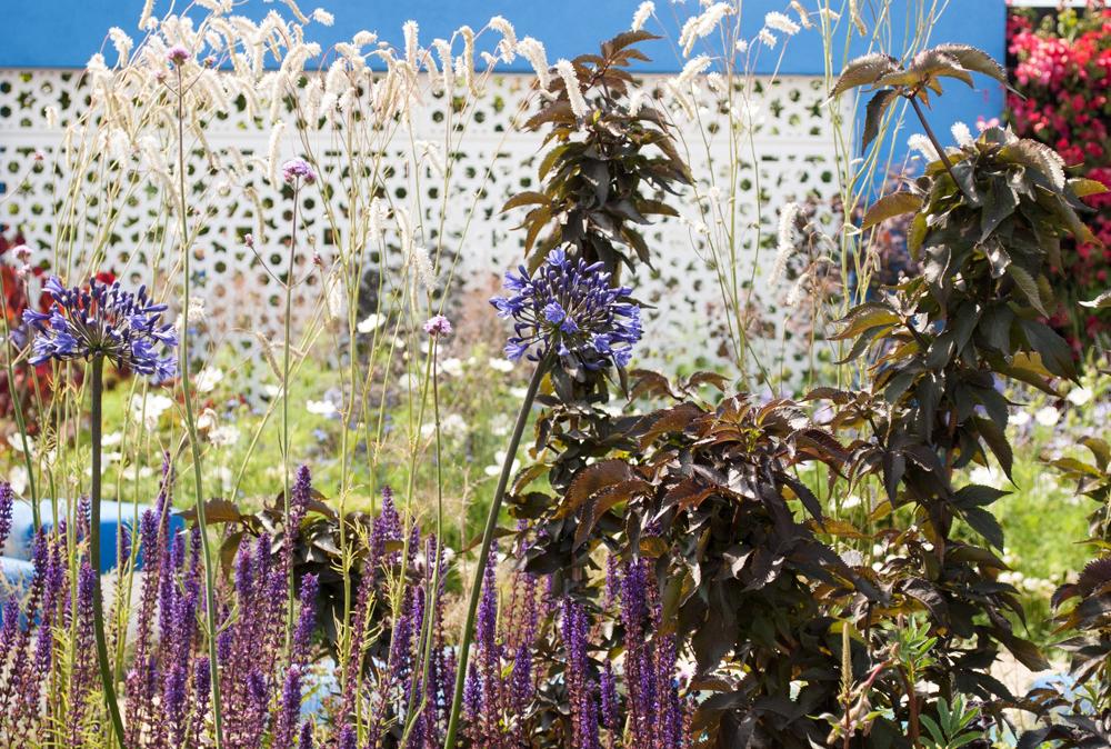 Jenny Blanc Blog - Spirit of Aegean Garden
