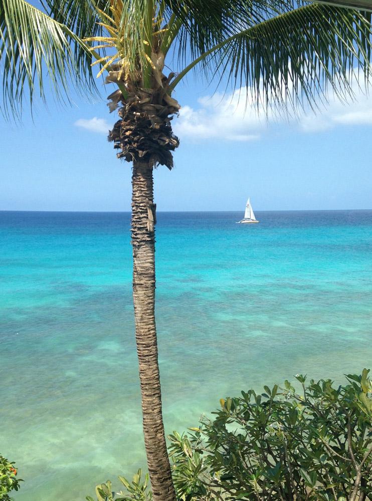 Jenny Blanc Blog - Barbados Stunning Island