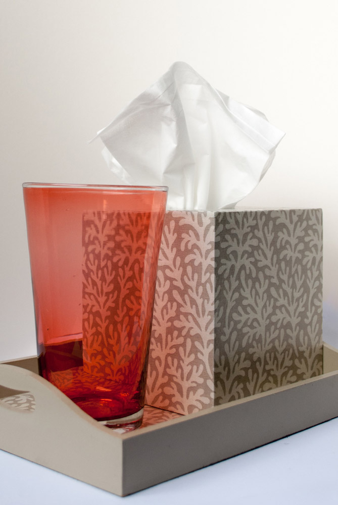 Jenny Blanc Blog - Handmade Glass with Tissue Box and Butler Tray