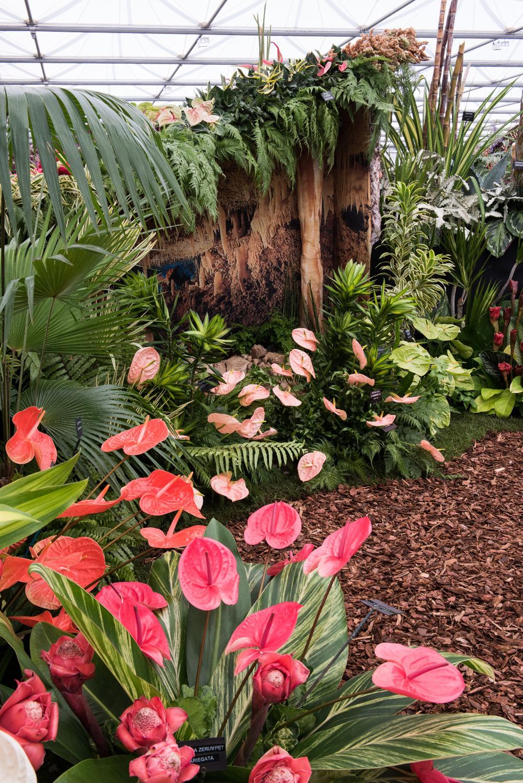 Jenny Blanc Blog - Chelsea Flower Show