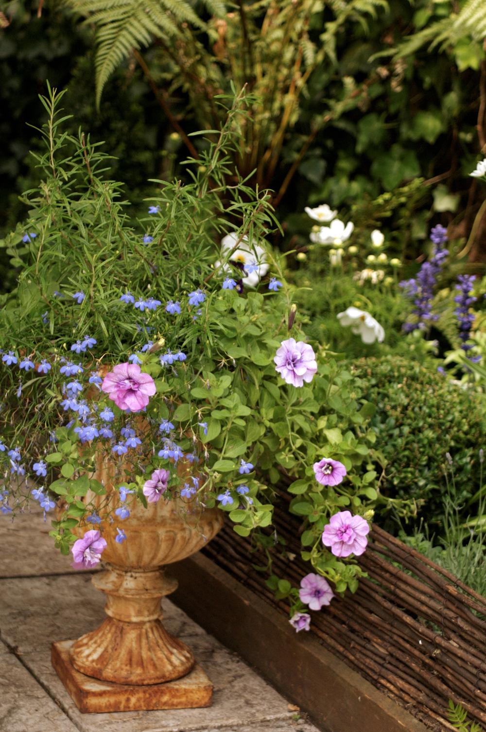 Jenny Blanc Blog - Floral Urn Display