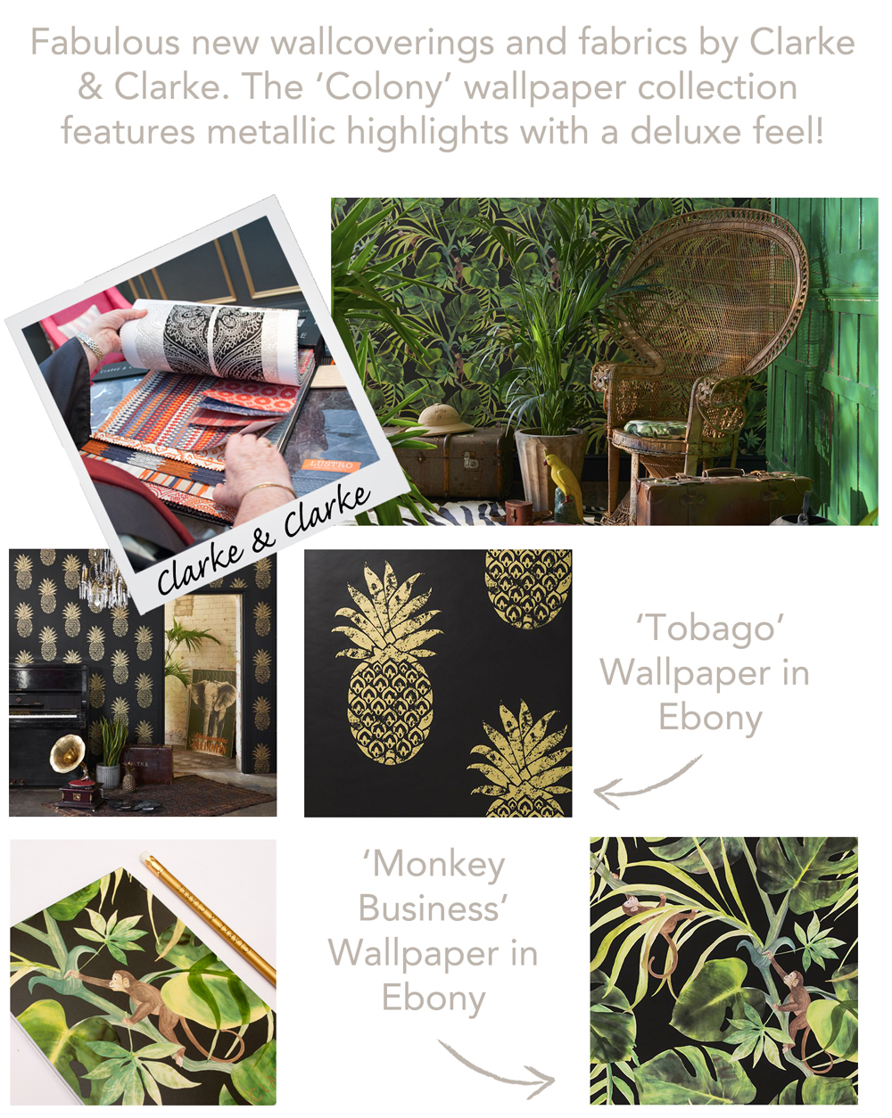 Jenny Blanc Blog - Fabrics and Wallcoverings pic1