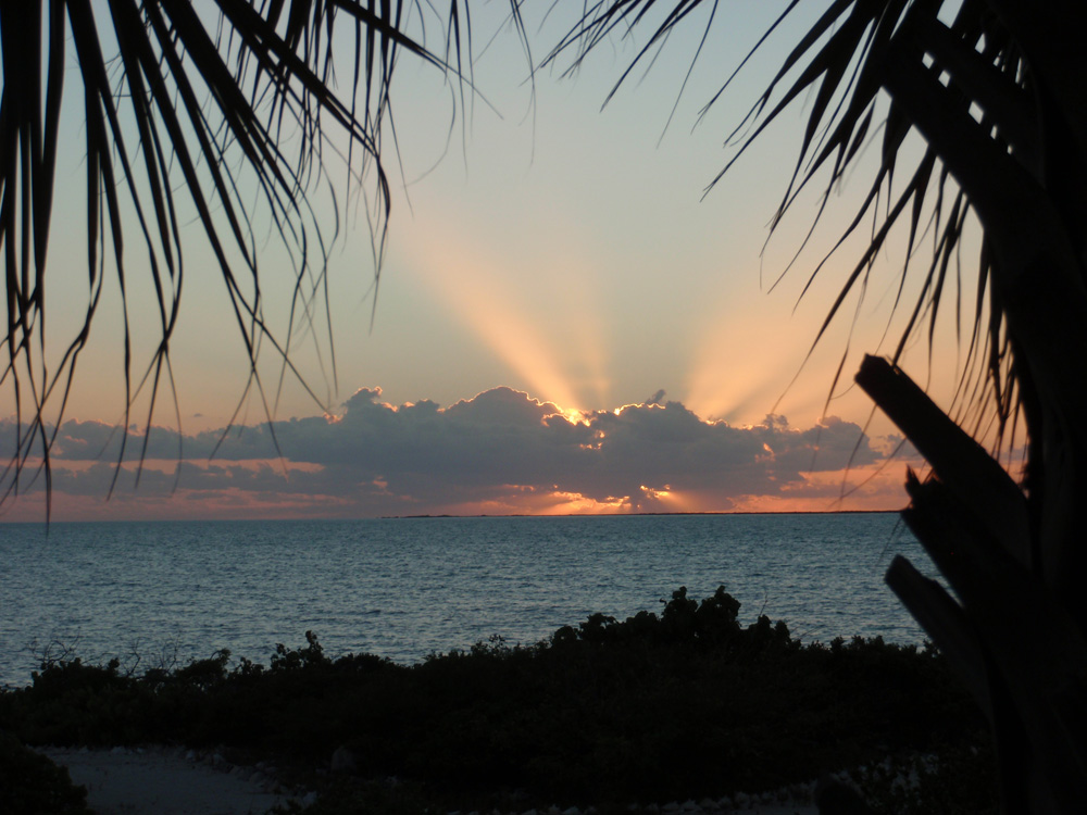 Jenny Blanc Blog - Barbados End of Season Sale