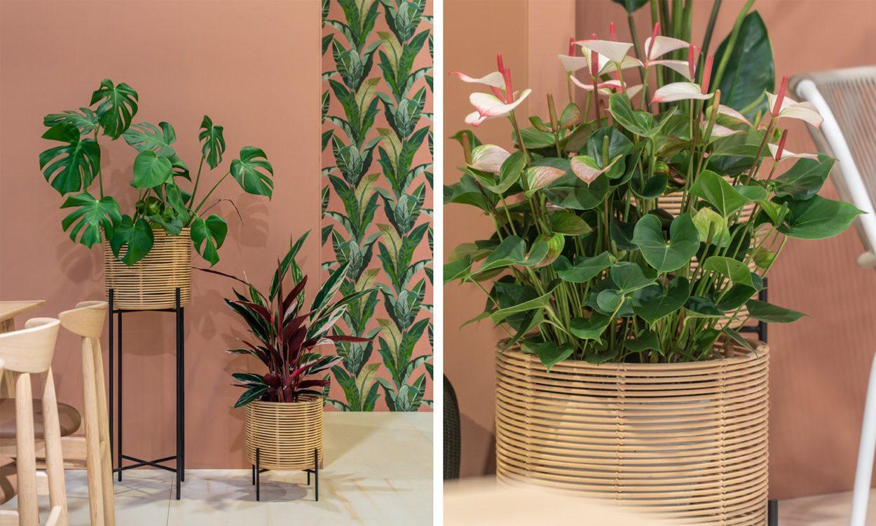 Jenny Blanc Interiors - Brand Partners - Vincent Sheppard - Vivi Plant Stand